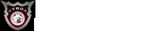פטרואה Logo